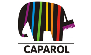 caparol - Partner